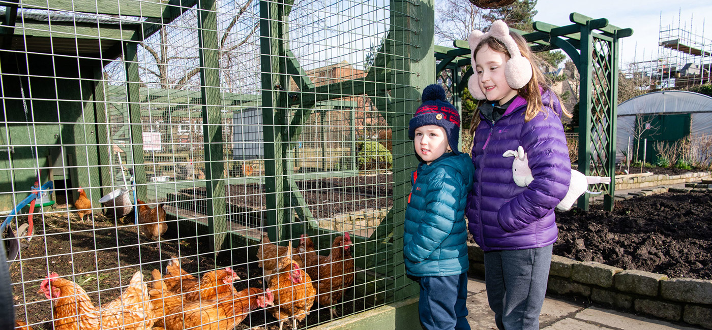 LOVE Gorgie Farm prepares to reopen its doors